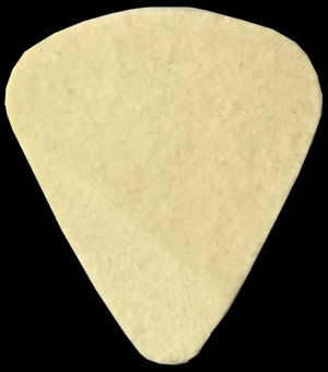 Tommy Shannon - Used Guitar Pick